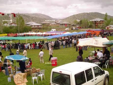 147. Geleneksel (Öküz Koşumu)Ortatepe Köyü Bahar Bayramı yapıldı
