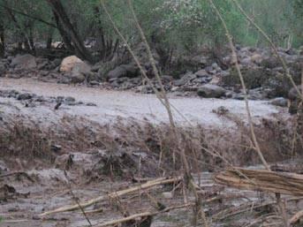 Ağrı'da sel felaketi: 5 ölü