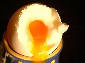 Hamilelikte yumurta bebeği koruyor