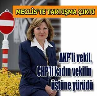 AKP'li vekil, CHP'li kadın vekilin üstüne yürüdü!