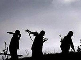 PKK, komşunun başına bela oldu