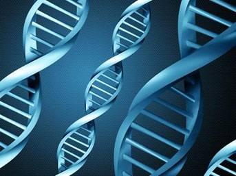 Kanserin yayılmasına yol açan gen bulundu!