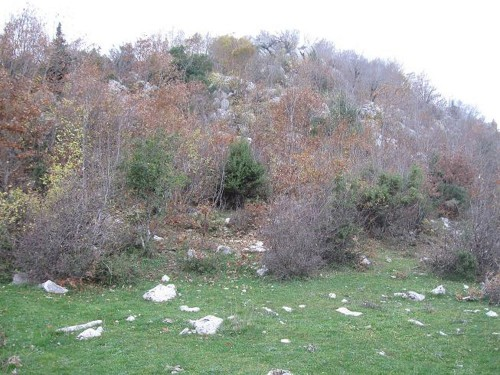 Alaüddevle Bozkurt Bey'in Mezarı Andırın'da mı?