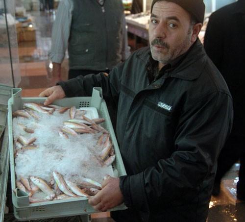 Balıkta ağır metal kalıntısı iddiaları …
