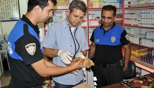 Hasta kediye polis şefkati..