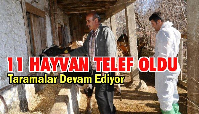 1 Belde 20 Köy Karantinaya Alındı