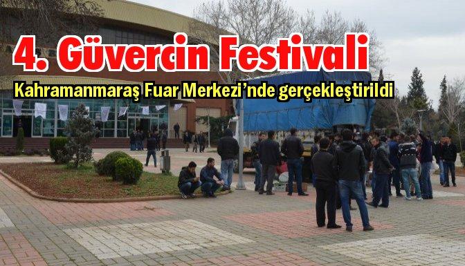 Güvercin Festivalinin 4.sü yapıldı
