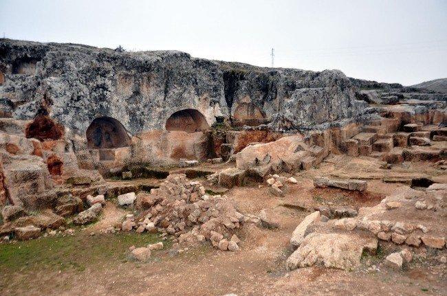 Perre Antik Kent, Bitki Yapısı Araştırıldı