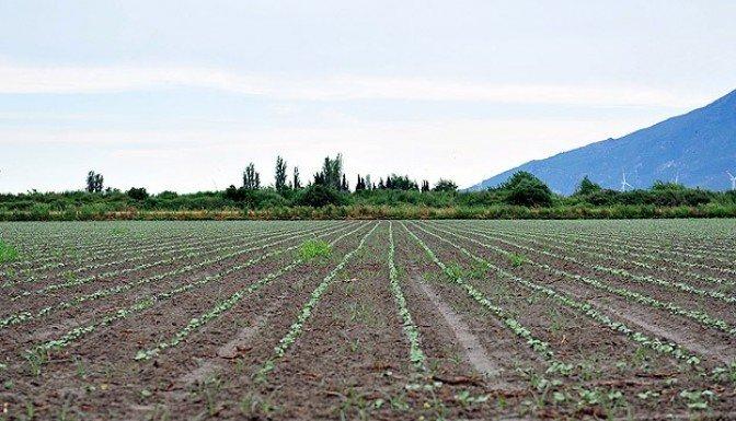 Çiftçilere borç ertleleme müjdesi