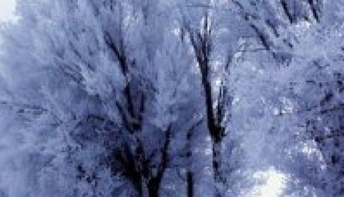 Kurtuluş Gününde Karla Karışık Yağmur Bekleniyor
