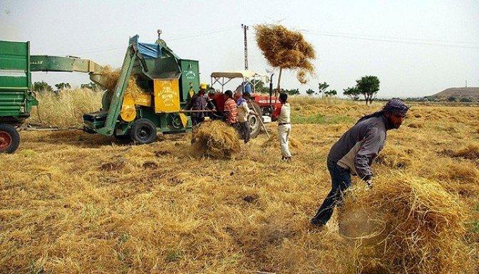 Çiftçiye destek müjdesi!