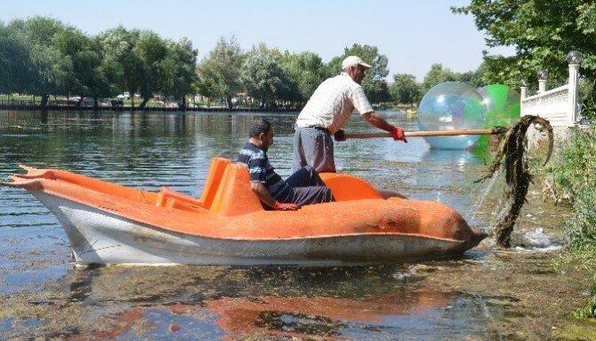 Ceyhan Nehri'ndeki Çöpler Temizleniyor!