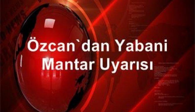 Özcan'dan yabani mantar uyarısı