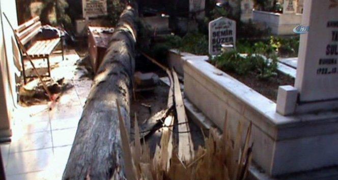 Fırtına ağaçları devirdi, çatıları uçurdu!