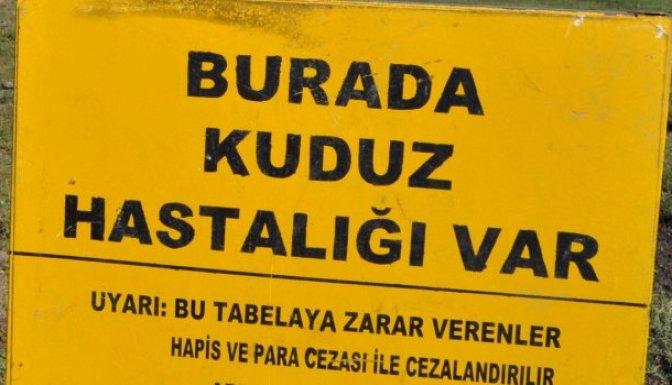 Osmaniye-Düziçi'nde kuduz karantinası!