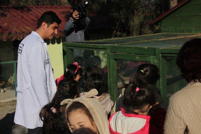 Hayvan Barınağı'nın Minik Ziyaretçileri