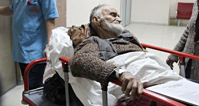 Bartın'da yaşlı adam, iki ayının saldırısına uğradı!