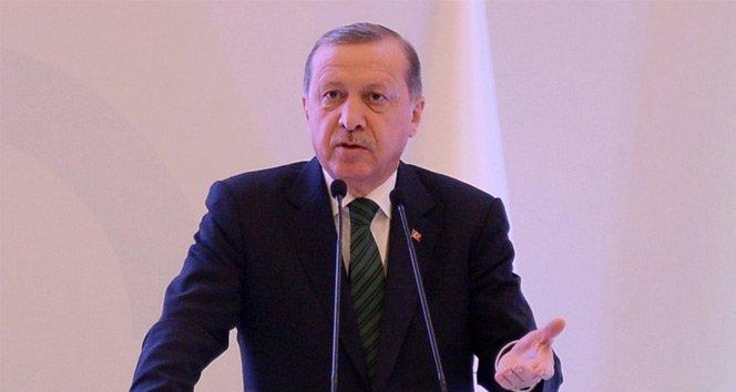 Erdoğan'dan Hollanda'ya sert tepki!