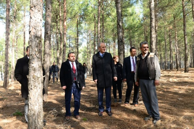 Kahramanmaraş'ın en büyük mesire alanı