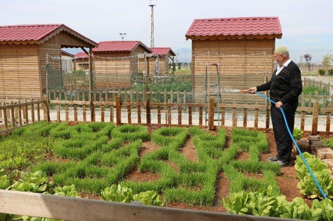 Cumhurbaşkanı sevgisini çimlerle gösterdi