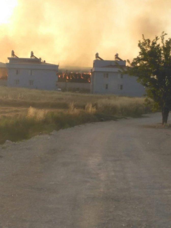 Çiftlikteki yem deposu alev alev yandı