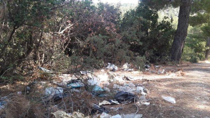 Ormanlık alanlar çöplüğe döndü