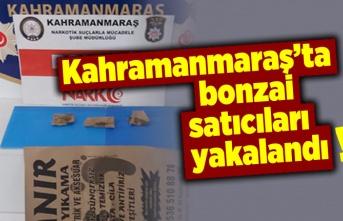 Bonzai satıcıları yakalandı