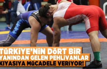 Türkiye'nin dört bir yanından gelen pehlivanlar kıyasıya mücadele veriyor!