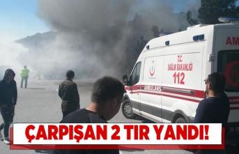 Adana'da çarpışan 2 TIR feci bir şekilde yandı!