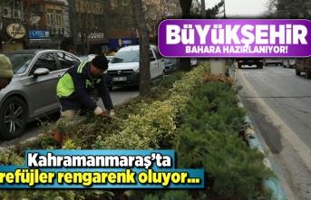 Kahramanmaraş'ta refüjler rengarenk oluyor!