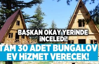 Başkan Okay yerinde inceledi tam 30 adet bungalov ev!