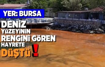 Yer: Bursa deniz yüzeyinin rengini gören hayrete düştü!
