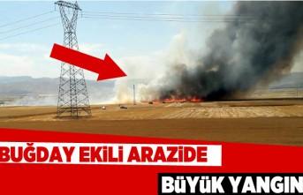 Buğday ekili arazide büyük yangın!