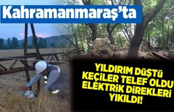 Kahramanmaraş'ta yıldırım düştü, elektrik direkleri yıkıldı, keçiler telef oldu!