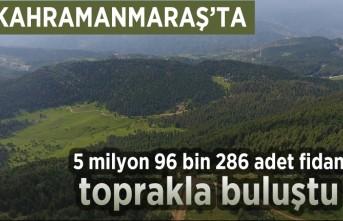Kahramanmaraş'ta 5 milyon 96 bin 286 adet fidan toprakla buluştu!