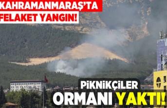 Kahramanmaraş'ta felaket yangın! Piknikçiler ormanı yaktı!