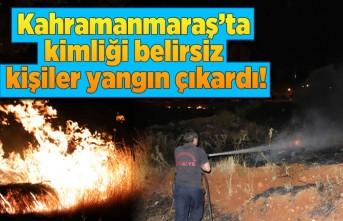 Kahramanmaraş'ta kimliği belirsiz kişiler yangın çıkardı!