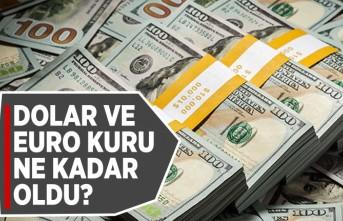 Dolar ve Euro kuru ne kadar oldu?