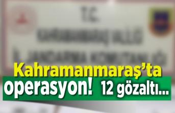 Kahramanmaraş'ta operasyon, 12 gözaltı!