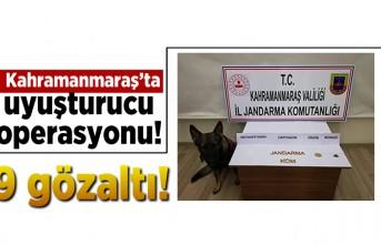 Kahramanmaraş'ta uyuşturucu operasyonu! 9 gözaltı...