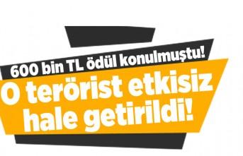 600 bin TL ödül konulmuştu! O terörist etkisiz hale getirildi!