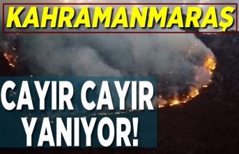 Kahramanmaraş cayır cayır yanıyor!