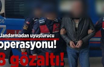 Jandarmadan uyuşturucu operasyonu! 8 gözaltı!