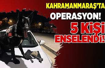 Kahramanmaraş'ta operasyon! 5 kişi enselendi!