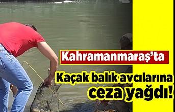Kahramanmaraş'ta kaçak balık avcılarına ceza yağdı!