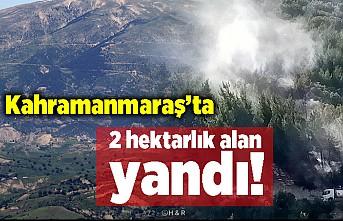 Kahramanmaraş'ta 2 hektarlık alanda yangın!