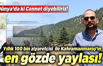 Dünya'da ki cennete yılda 100 bin ziyaretçi, Kahramanmaraş'ın en gözde yaylası!