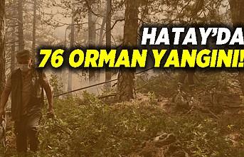 Hatay'da 76 orman yangını!