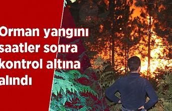 Orman yangını saatler sonra kontrol altına alındı