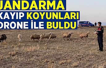 Jandarma 30 kayıp koyunu drone ile buldu
